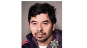 ANOTHER ILLEGAL ALIEN HAS RAPED A DOG…ENDING IN CANINE'S DEATH
